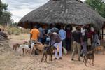 Zimbabwe Harare Metro Province Vaccination Campaign