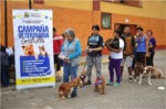 World Rabies Day 2015 - Pan-American WRD Initiative photo competition  © rabiesalliance.org.jpg