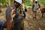 Zanzibar Static Point Vaccination Campaign and Beta Testing RDC - January 2017