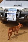 Madagascar BI vaccines