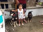 Ilocos Norte Mass Vaccination - 2015