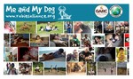 Me and My Dog Campaign 2014 collage