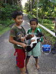 Nias Island Mass Dog Vaccination 2015 - Indonesia